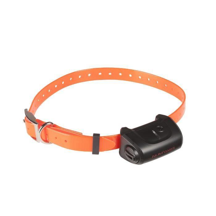 NUMAXES Collier supplémentaire CANICOM 5 - Sangle orange