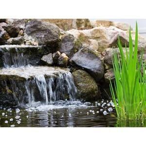 bassin dextrieur systeme de filtration complet pour grand bassin - Fontaine De Bassin Exterieur