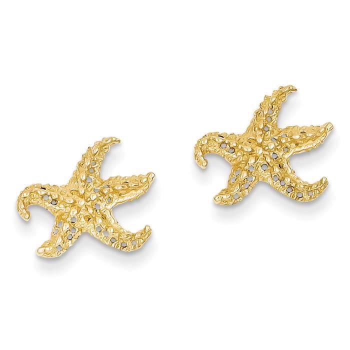 14 carats-Boucles doreilles Etoile de Mer-Dimensions :12 x 12 mm