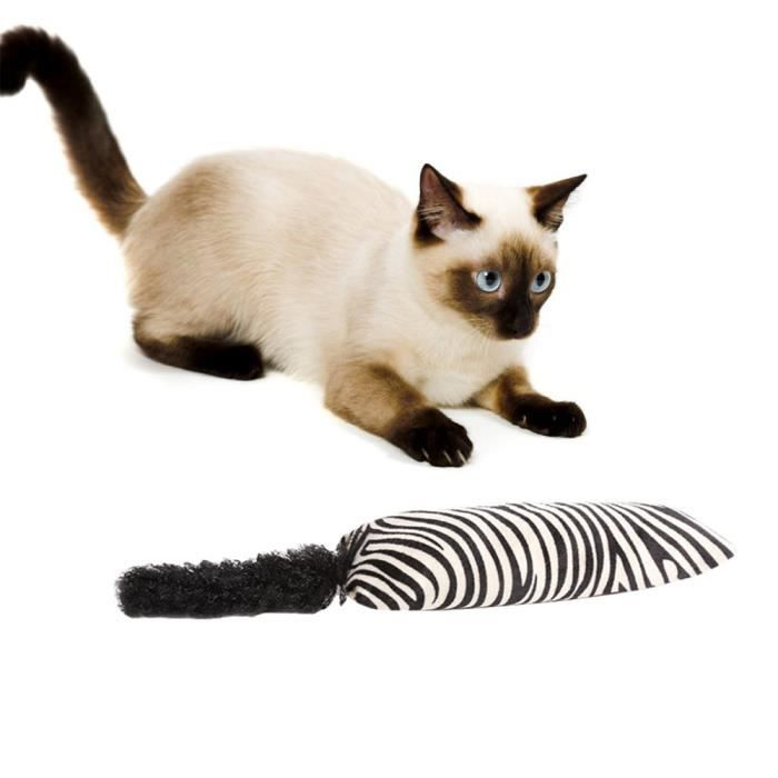 Cazy Jouer Cataire Toy Chaton Coussin Jouet Pour Chat Hgf371