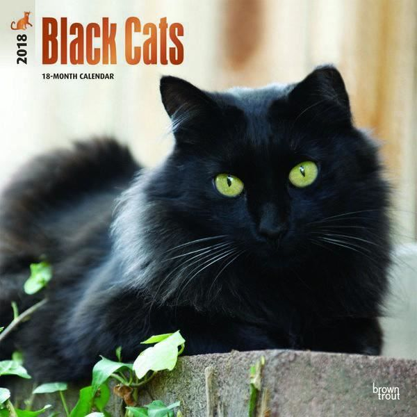 Calendrier 2018 Chats Achat Vente Calendrier 2018 Chats Pas Cher Black Friday Le 24 11