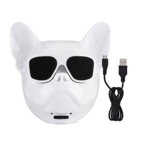 ENCEINTE NOMADE Haut-Parleur Stéréo Bluetooth 4.1 Sans Fil en Form