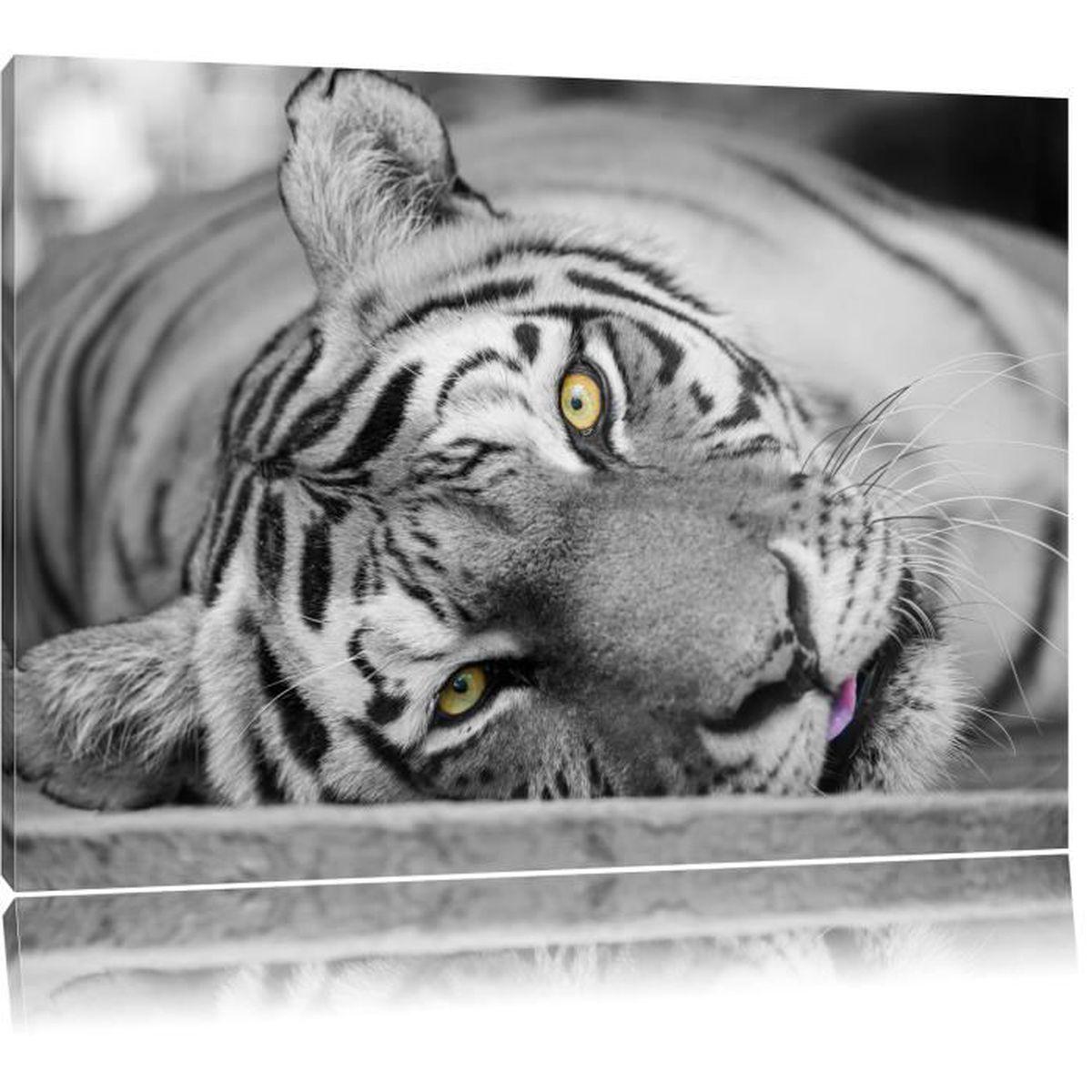 Toile imprim t te de tigre noir blanc compl tement - Image tete de tigre ...