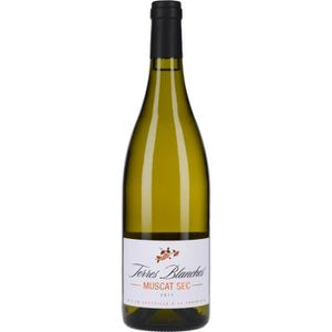 VIN BLANC Vin Blanc - Muscat Sec Terres Blanches 2017 - Bout