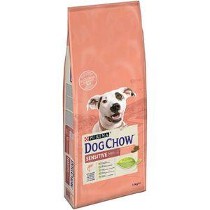 CROQUETTES DOG CHOW Croquettes - Avec du saumon - Pour chien