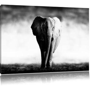 tableau elephant noir et blanc achat vente pas cher. Black Bedroom Furniture Sets. Home Design Ideas