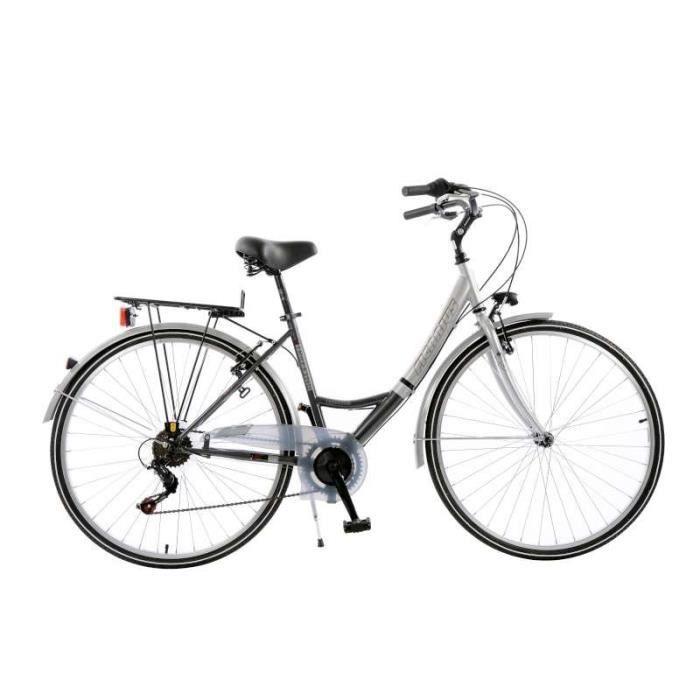Vélo Ficarius Trekking - Argent et Anthracite