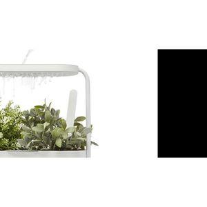 Pot A Herbes Aromatiques Achat Vente Pas Cher