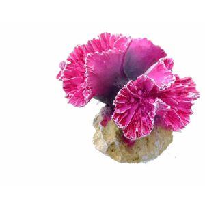AQUA DELLA Décoration pour aquarium Corail Symphylia - 8 x 8 x 7cm - S