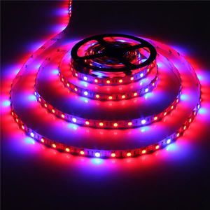 BANDE - RUBAN LED U 5050 SMD 60 LED Strip Grow Light aquarium serre