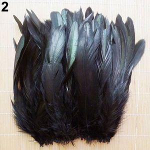 d38ba0f827e Plume de déco 50 Pcs 13-20cm Naturel Belle Coq Queue Queue De Pl