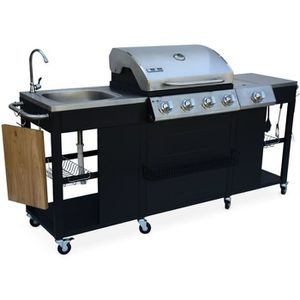 BARBECUE Barbecue au gaz 4+1 brûleurs D'Artagnan
