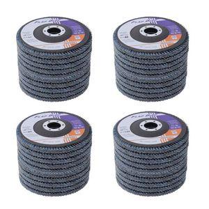 DISQUE ABRASIF Lot de 40 disques abrasifs à lamelles, 125 mm, # 4