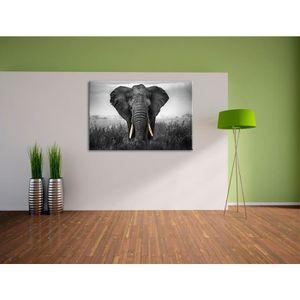 tableau noir et blanc elephant achat vente tableau noir et blanc elephant pas cher cdiscount. Black Bedroom Furniture Sets. Home Design Ideas