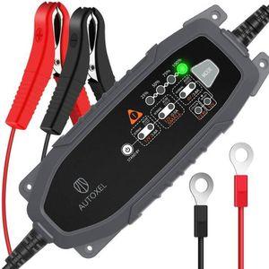 CHARGEUR DE BATTERIE AUTOXEL Chargeur de Batterie Intelligent 6V/12V 3.