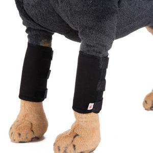 HARNAIS SPORT DE CHIEN 2 pièces chien chat genouillèrs mini pour protéger