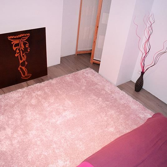 tapis sunny shaggy poils longs rose p le 160 x 220 cm. Black Bedroom Furniture Sets. Home Design Ideas