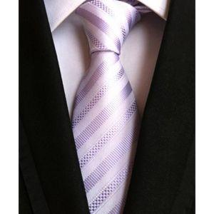 CRAVATE - NŒUD PAPILLON Cravate Homme pour Mariage Travail Élégant Simple