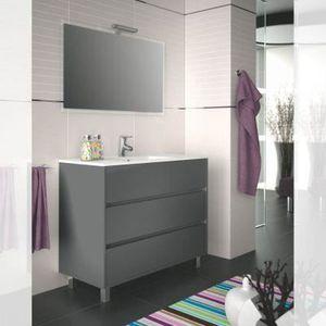 Meuble salle de bain 100 cm couleur gris - Achat / Vente salle de ...