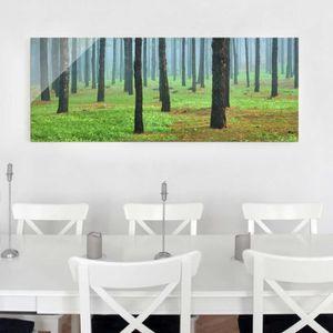 CADRE PHOTO 30x80 cm photo en verre - forêt profonde de pins s