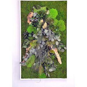 Mur vegetal naturel achat vente pas cher for Mur vegetal pas cher