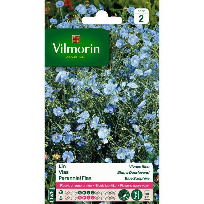 VILMORIN Lin vivace bleu