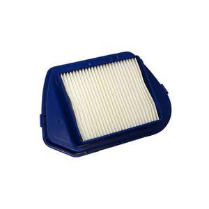ASPIRATEUR TRAINEAU Filtre d'aspirateur pour Rowenta RO5396, HEPA