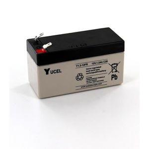 BATTERIE DOMOTIQUE Batterie Plomb Yuasa 12V 1.2A Y1.2-12FR taille réd