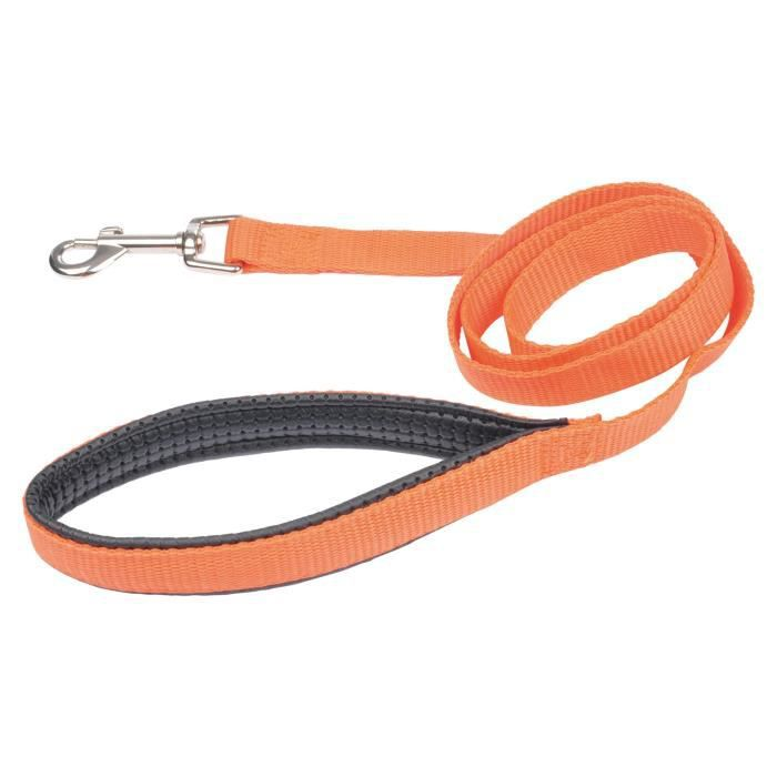 Laisse poignée confort - Polypropylène - 120 cm x 25 mm - Orange - Pour chien