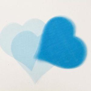 DÉCORATION DE TABLE Lot de 50 coeurs en organza coloris Turquoise - 8,