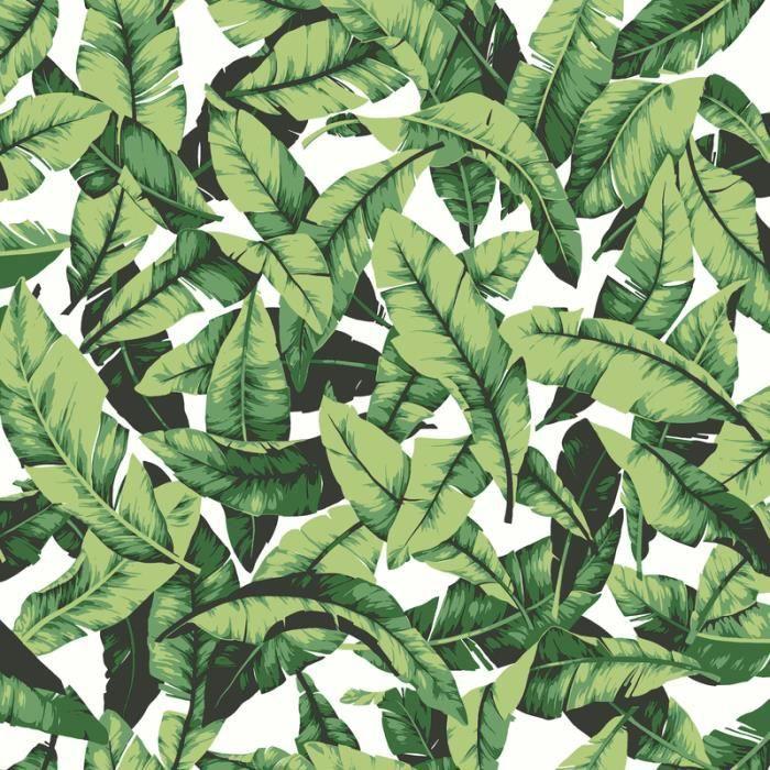 Papier Peint Repositionnable Jungle 500 X 53 Cm Vert Multicolore