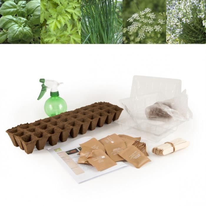 LIVRE JARDINAGE 30 plantes aromatiques à semer pour jardiner à l'é