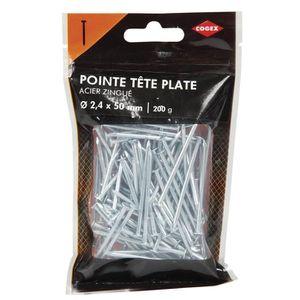 COGEX Pointe ? t?te plate acier - 2,3x50 mm - 200gr