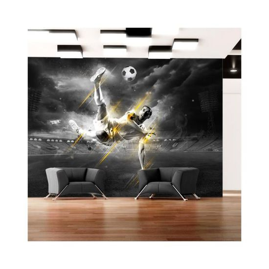 Papier Peint Football Legend Dimension 350x245 Achat Vente