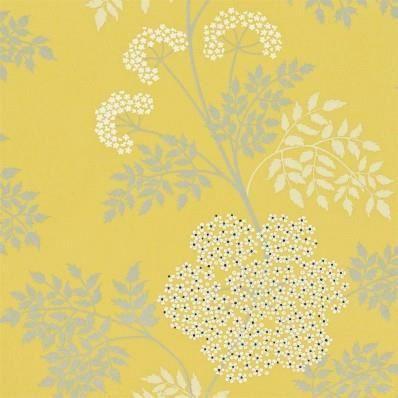 Papier Peint Sanderson   Options 10   Cowparsley   Jaune   Gris