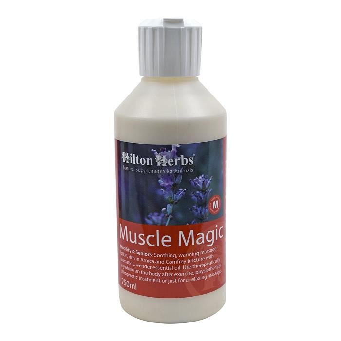 Hilton Herbs Muscle Magic Muscles Cheval 250 ml:  Animalerie