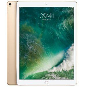 TABLETTE TACTILE Apple Nouveau iPad Pro 12.9 4G 256Go Space or Tabl