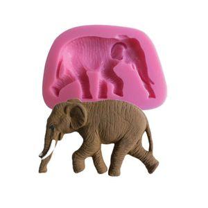 site réputé 69fda a9d45 Patte d elephant