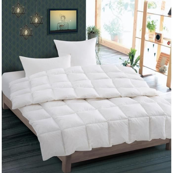 Couette plumes Cocoon 240x260