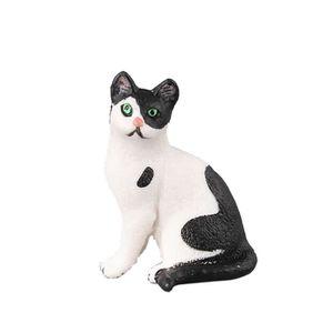 Fille noire montrant la chatte