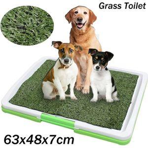 MAISON DE TOILETTE TEMPSA Tapis de Toilette Tapis d'herbe Pour Animau