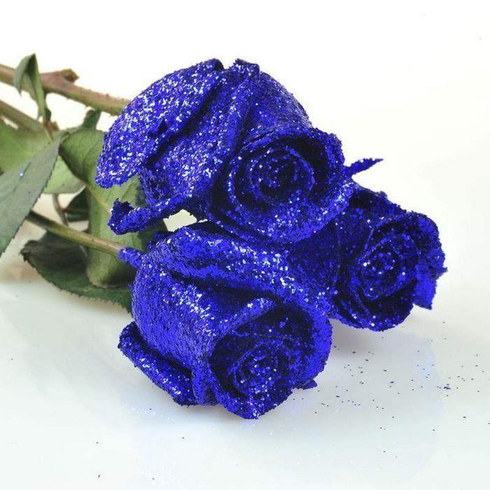 graine de rose bleue achat vente graine de rose bleue pas cher cdiscount. Black Bedroom Furniture Sets. Home Design Ideas
