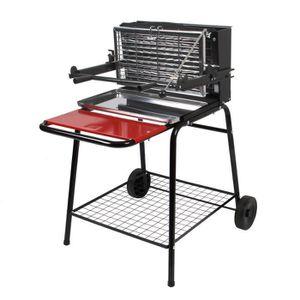 BARBECUE Barbecue Raymond - Cuisson verticale au charbon de