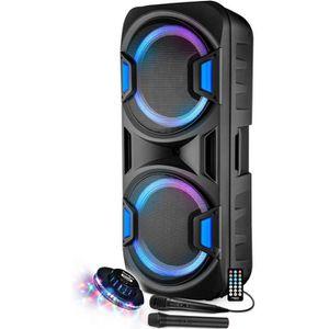 PACK SONO Enceinte Sono DJ PA Mobile Party Batterie Karaoké