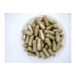 CIRCULATION SANGUINE Ginkgo Biloba 500 gélules dosées à  500 mg unité