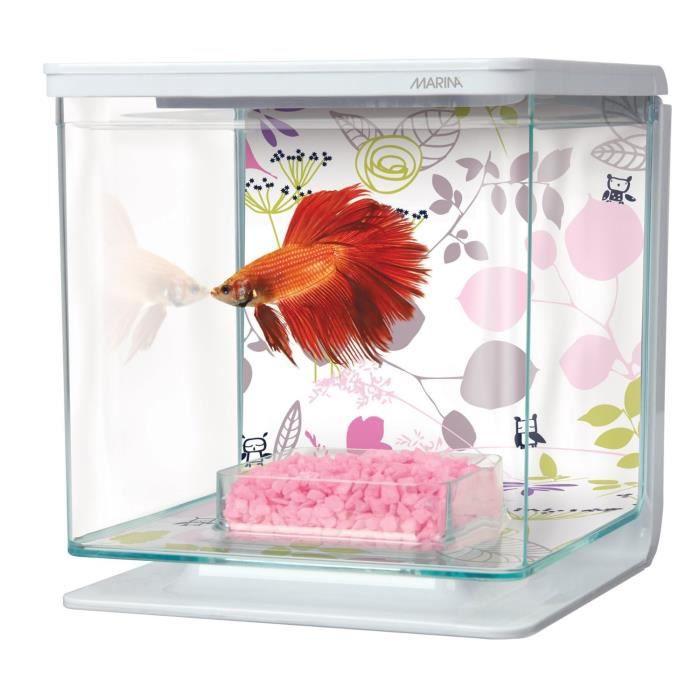 Aquarium pour poisson combattant achat vente pas cher for Aquarium pour poisson pas cher
