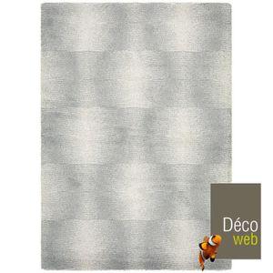 TAPIS Tapis 160 x 230 cm Nomadic Gris - Dunes de sable