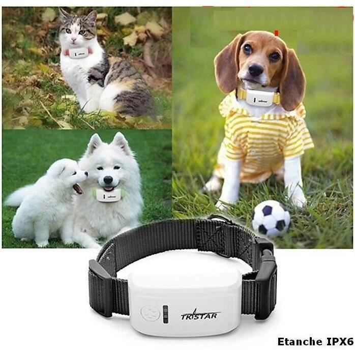detailed images hot product size 7 Mini Collier Traceur GPS pour animaux chiens chats avec ...