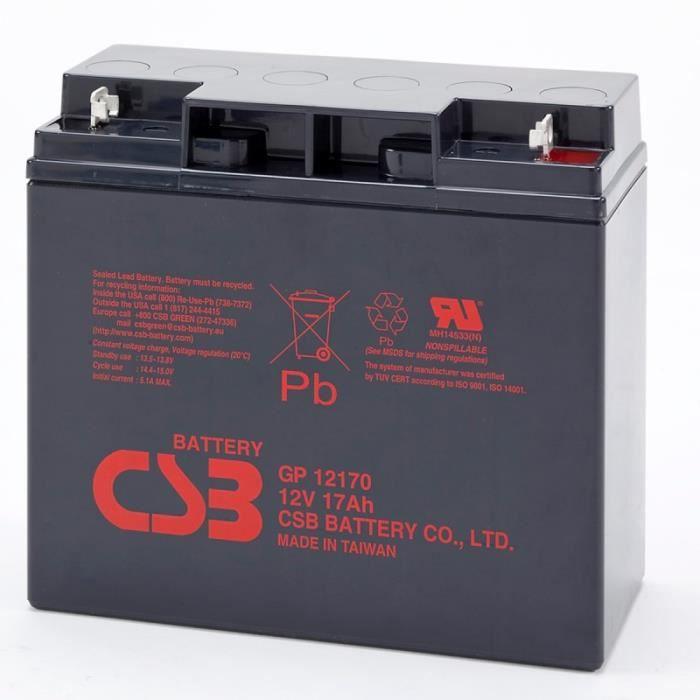 batterie plomb 12v 17ah csb gp12170 achat vente batterie domotique batterie plomb 12v 17ah. Black Bedroom Furniture Sets. Home Design Ideas