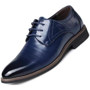 DERBY Modern Classic Lace Up Wingtip Robe Oxfords Chauss